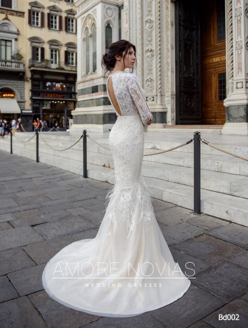 http://amore-novias.com/images/stories/virtuemart/product/bd002-------(3).jpg