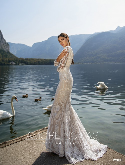 http://amore-novias.com/images/stories/virtuemart/product/for-bridal-pro10.jpg