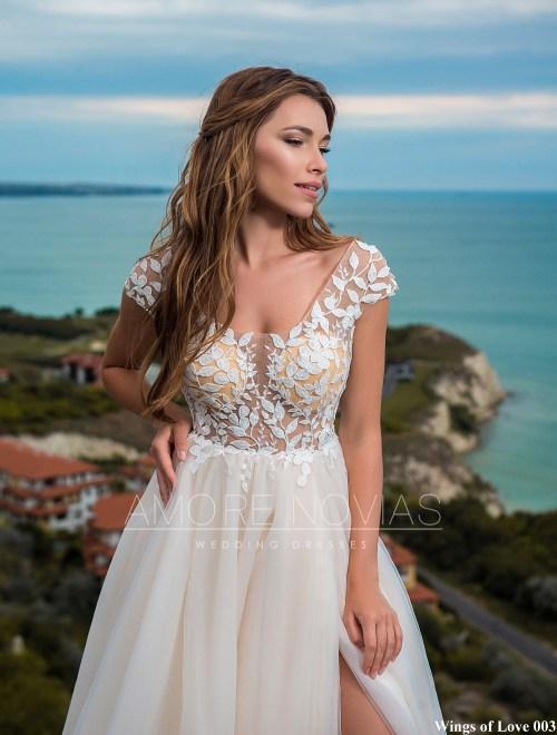 http://amore-novias.com/images/stories/virtuemart/product/lk-003-------(2).jpg