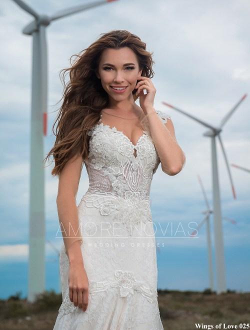 http://amore-novias.com/images/stories/virtuemart/product/lk-025-------(2).jpg