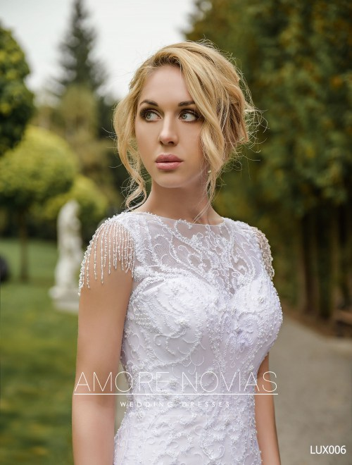 http://amore-novias.com/images/stories/virtuemart/product/lux006--------(4).jpg